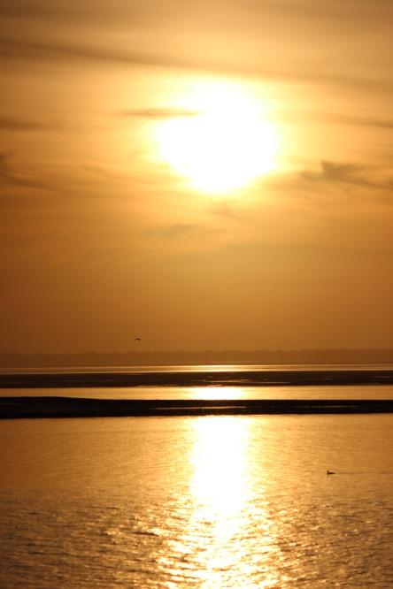 Golden Winter Sunset (c) S.M.Lennox 2014
