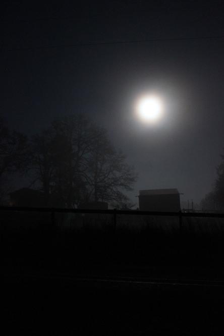 Shadowed in Full Moon, S.M.Lennox (c) 2014