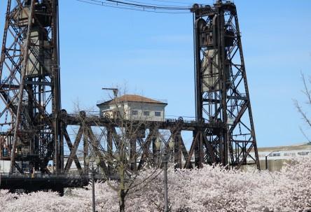 Bridge Life in the City of Bridges, Portland OR c S.M. Lennox 2014